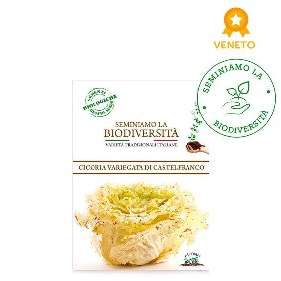Semi Bio Cicoria Castelfranco 2gr