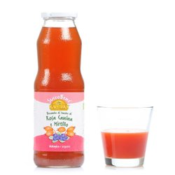 Succobene Rosa Canina e Mirtillo 750ml