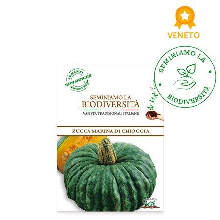 Semi Bio Zucca Marina di Chioggia 3gr