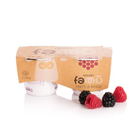 Yogurt ai Frutti di Bosco 2x125g