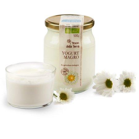 Yogurt Magro 500g