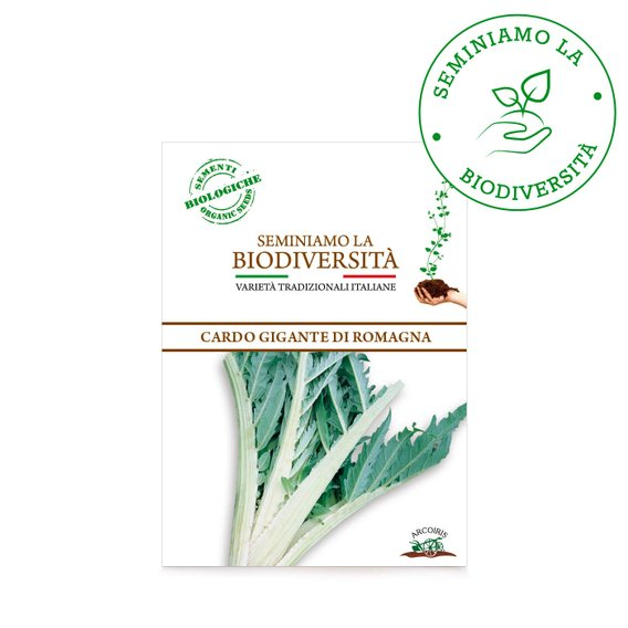 Semi Bio Cardo gigante di Romagna 2gr