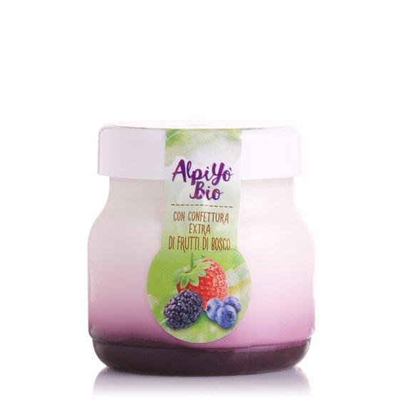 Yogurt Bio ai Frutti di Bosco 125g