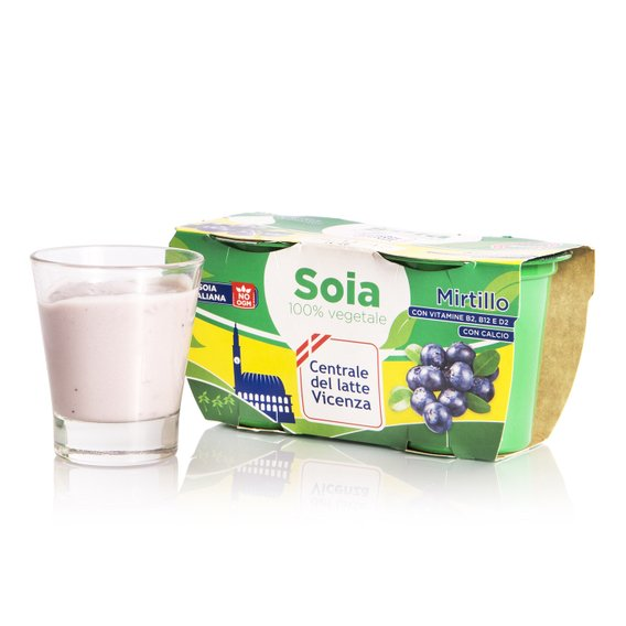Yogurt di Soia al Mirtillo 2x125g