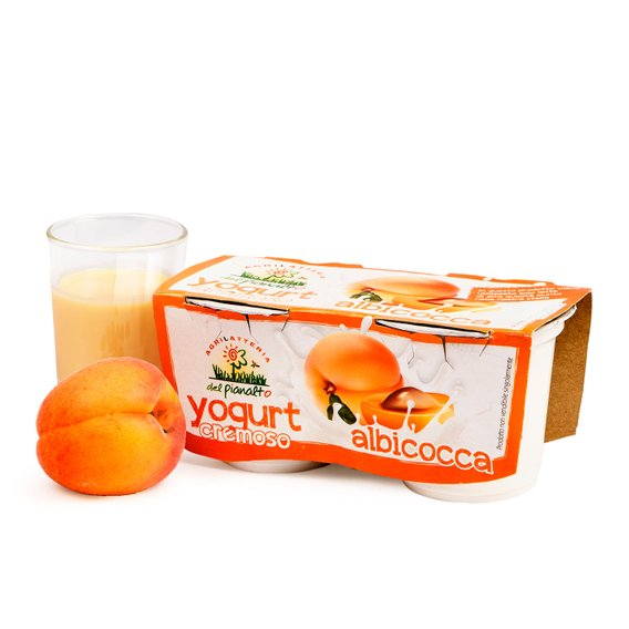 Yogurt all'Albicocca  2x125g