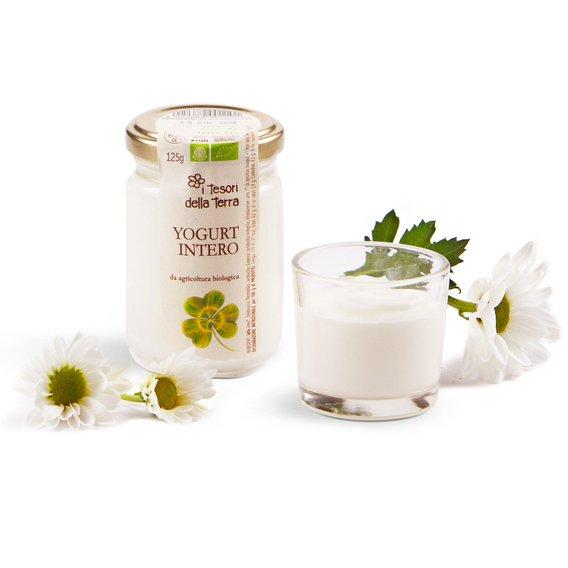 Yogurt Intero  125g