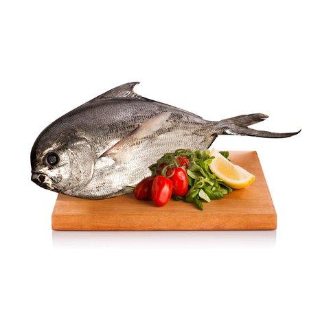 Pesce Castagna 400g