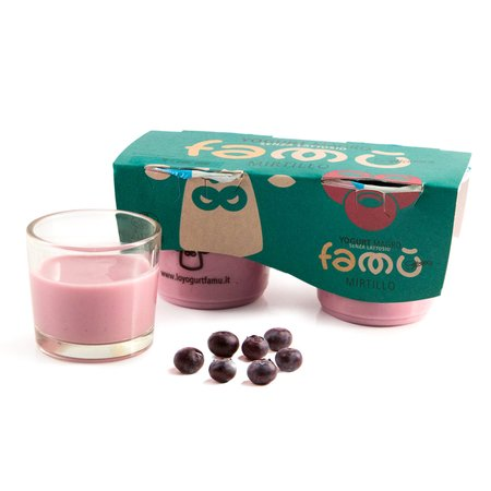 Yogurt al Mirtillo Senza Lattosio  2x125g