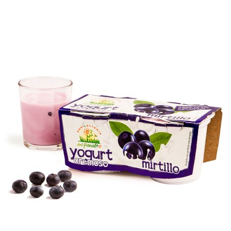 Yogurt al Mirtillo  2x125g