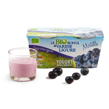 Yogurt ai mirtilli 2x125 g