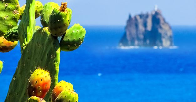 I sapori del centro e del sud Italia